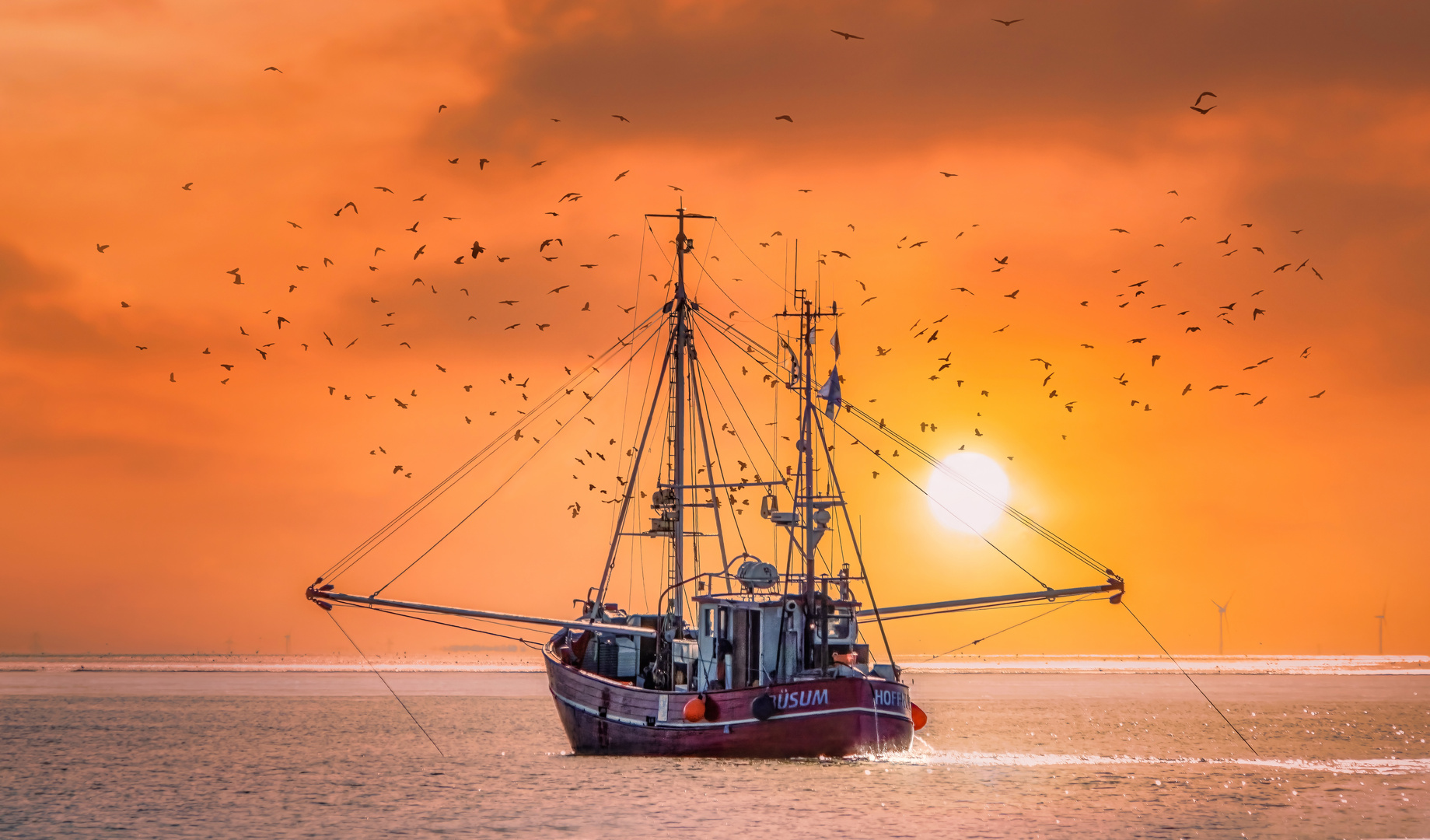 Helgoland #5 (Fishing boat on its way home)