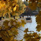 Helsinki, Vantaa river, the fisherman