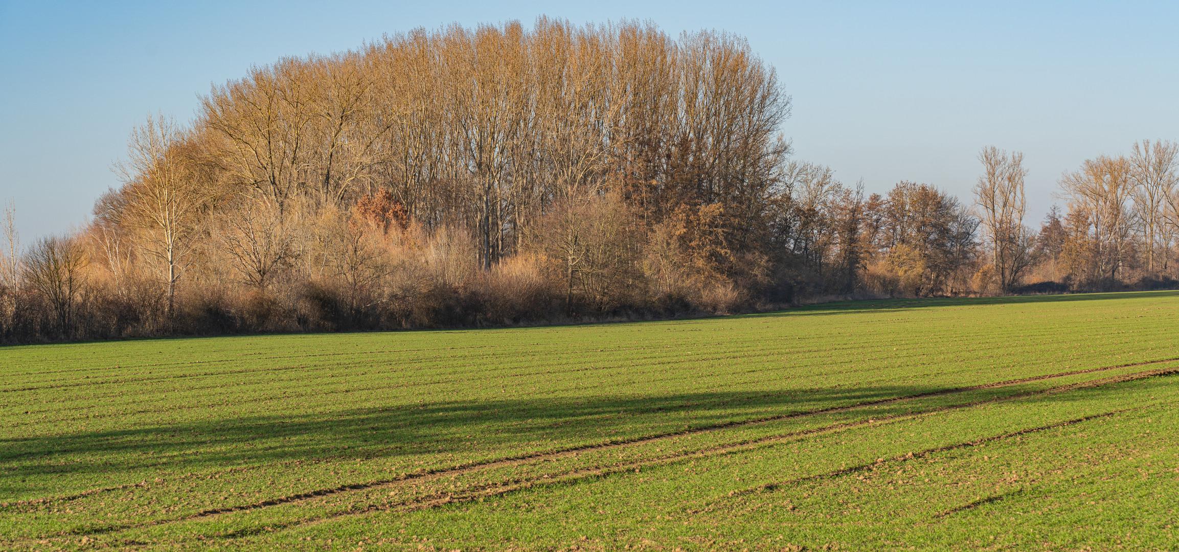 Hemmingen bei Hannover VI