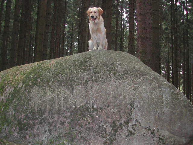 Herbert am Runenstein