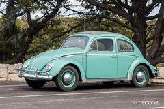 Herbie auf Tour