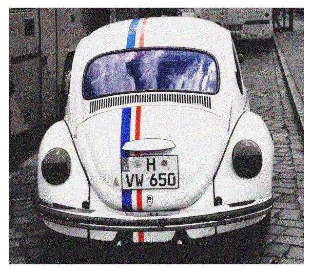 Herbie der schnellste Rennkäfer der Welt