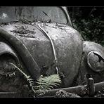 Herbie im Altersheim..
