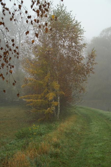 Herbst 02