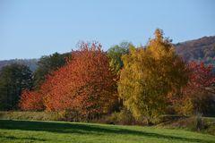 Herbst -10-