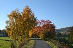 Herbst -15-