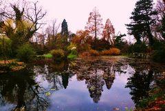 Herbst 2008 in der Kölner Flora