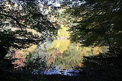 Herbst 2012 - IV