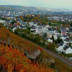"""""""Herbst 2020, in meiner Heimatstadt""""......."""