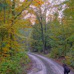 Herbst, 4 (otoño, 4)