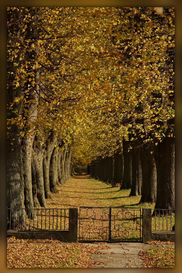 Herbst......