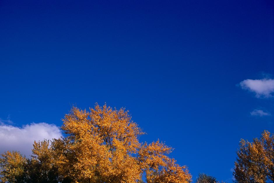 Herbst, -8
