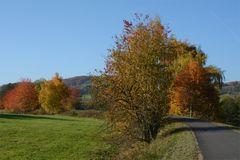 Herbst -9-