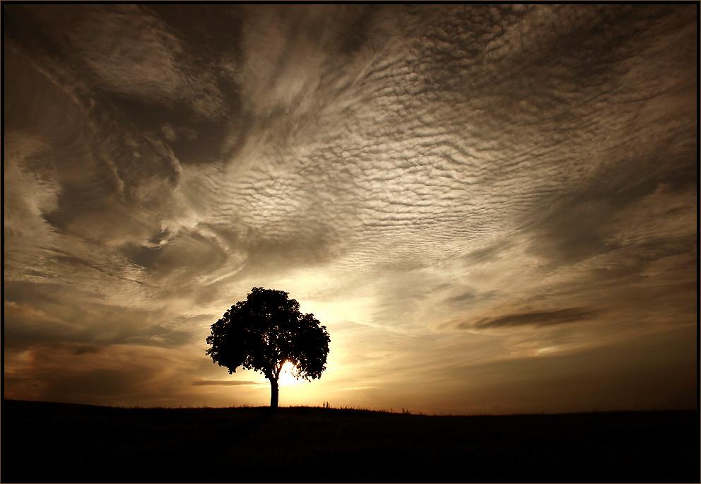 ...Herbst - Abend...