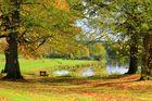 Herbst ade ...