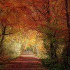 Herbst ade
