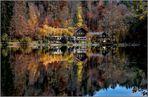 Herbst am Alatsee / Ostallgäu (1)