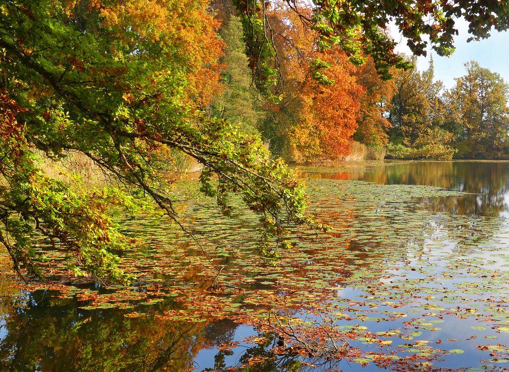 Herbst am Auseeli