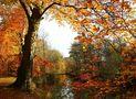 Herbst am Bach von Heinz Schmalenstroth