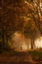 Herbst am besten