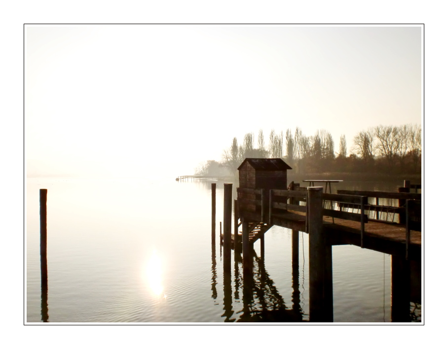 Herbst am Bodensee (3)