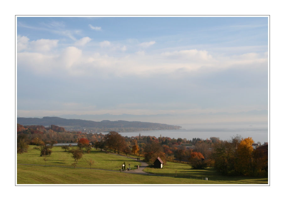 Herbst am Bodensee (4)