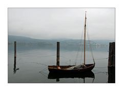 Herbst am Bodensee Nr. 2