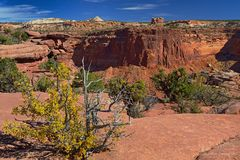 Herbst am Dead Horse Point