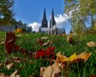 Herbst am Dom...