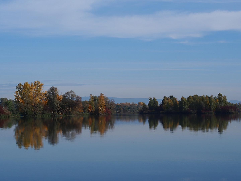 Herbst am Fluß 2