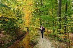 Herbst am Hasselbach Hanggraben
