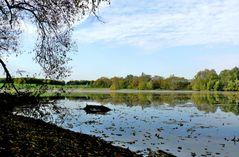 Herbst am Hitdorfer See
