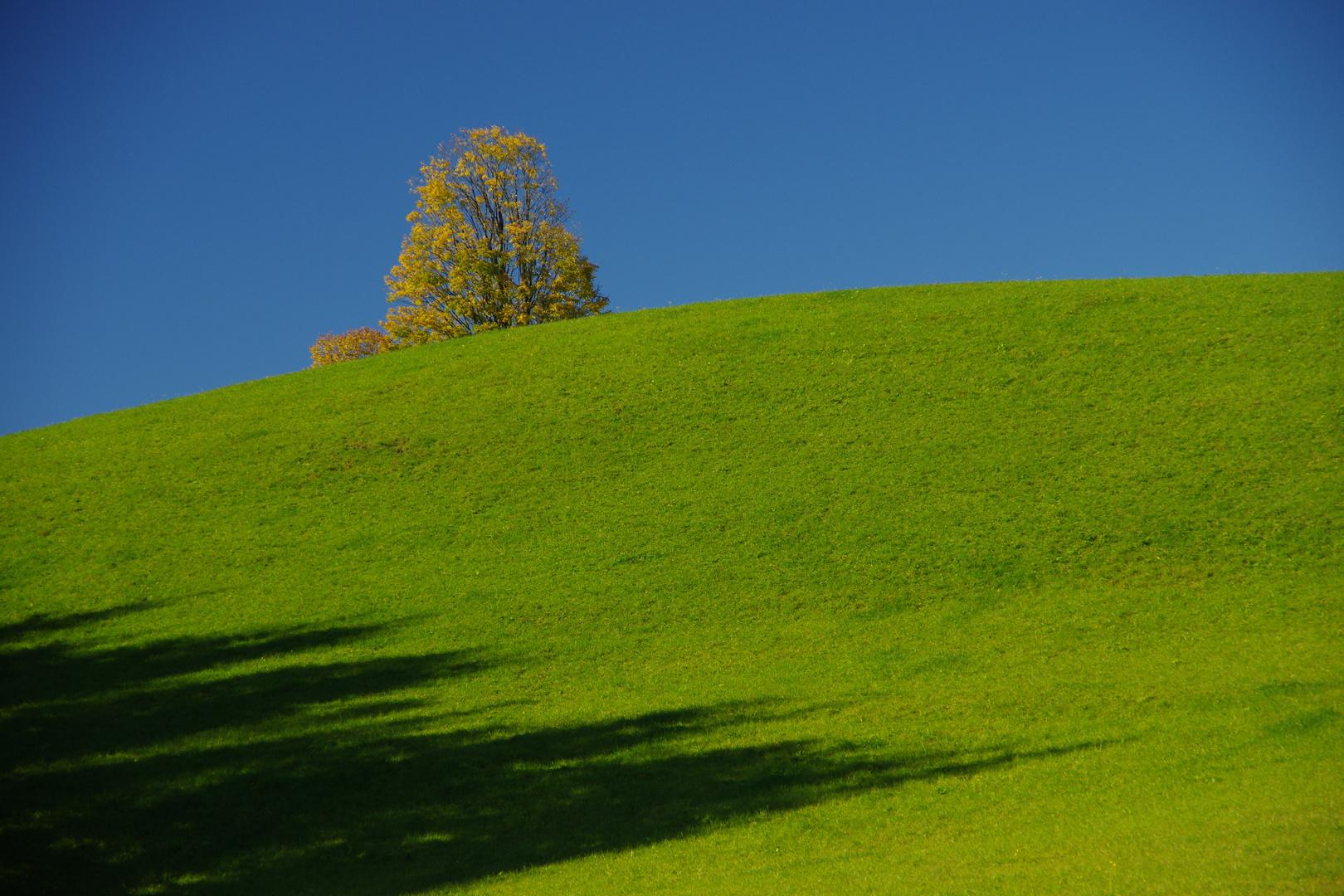 Herbst am Horizont