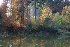 Herbst am kleinen Waldsee