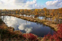 Herbst am Köppchensee