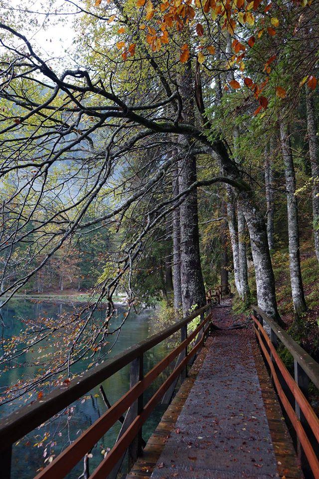 Herbst am Lago di fusine