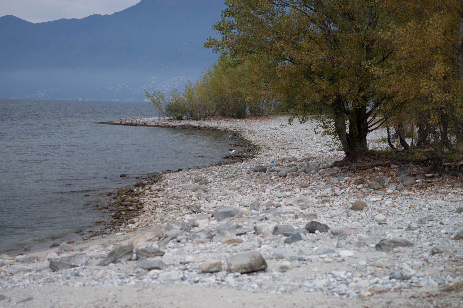 Herbst am Lago Maggiore