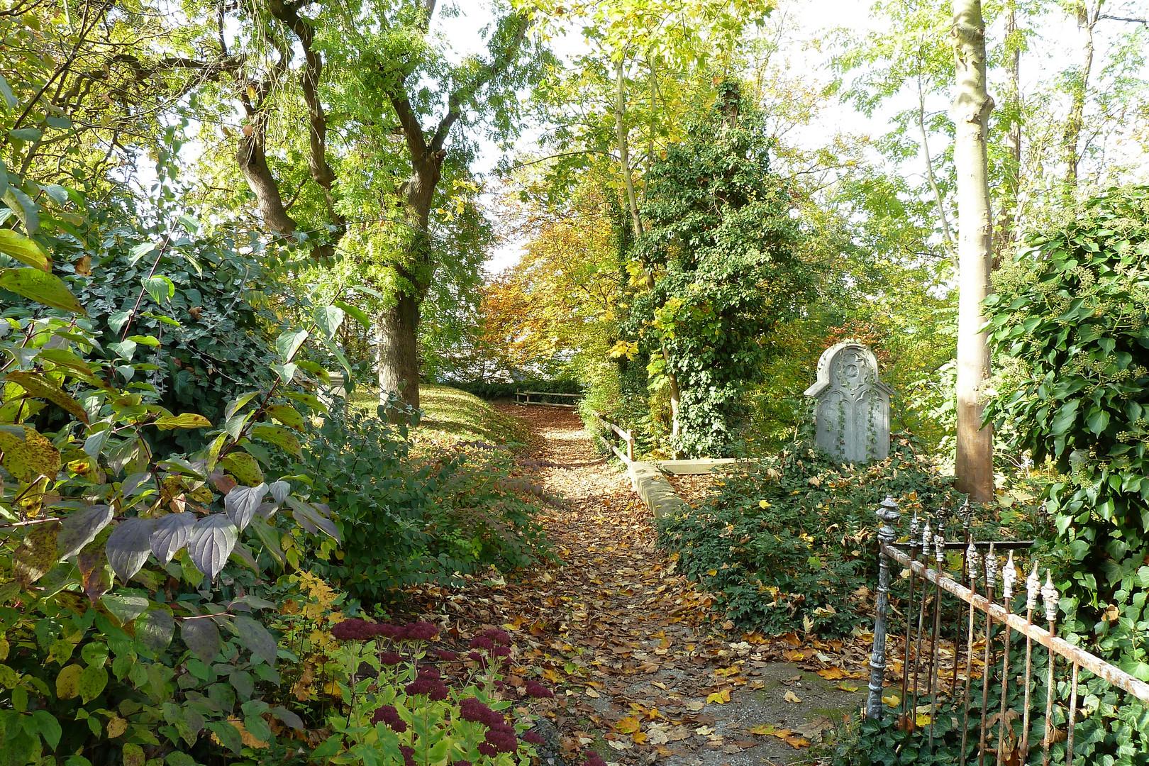 Herbst am Limburger Dom