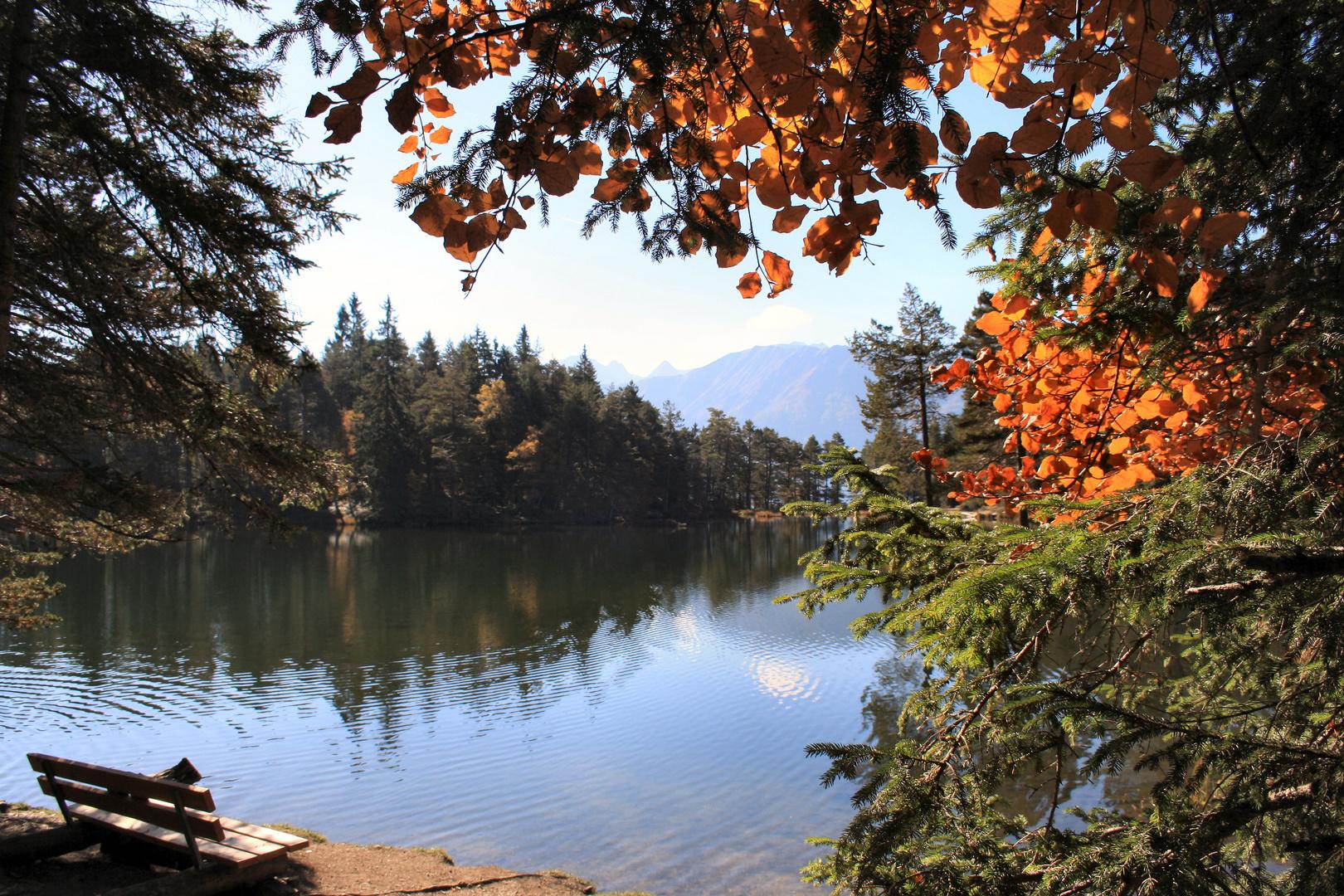 Herbst am Möserer See Tirol