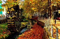 Herbst am Mühlrad. ......