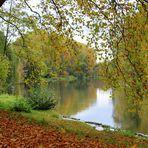 Herbst am Neckar