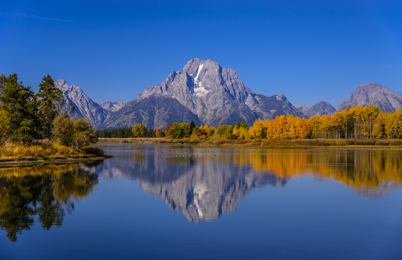 Herbst am Oxbow Bend mit Mount Moran, Wyoming, USA