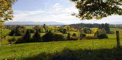 Herbst am Reutberg
