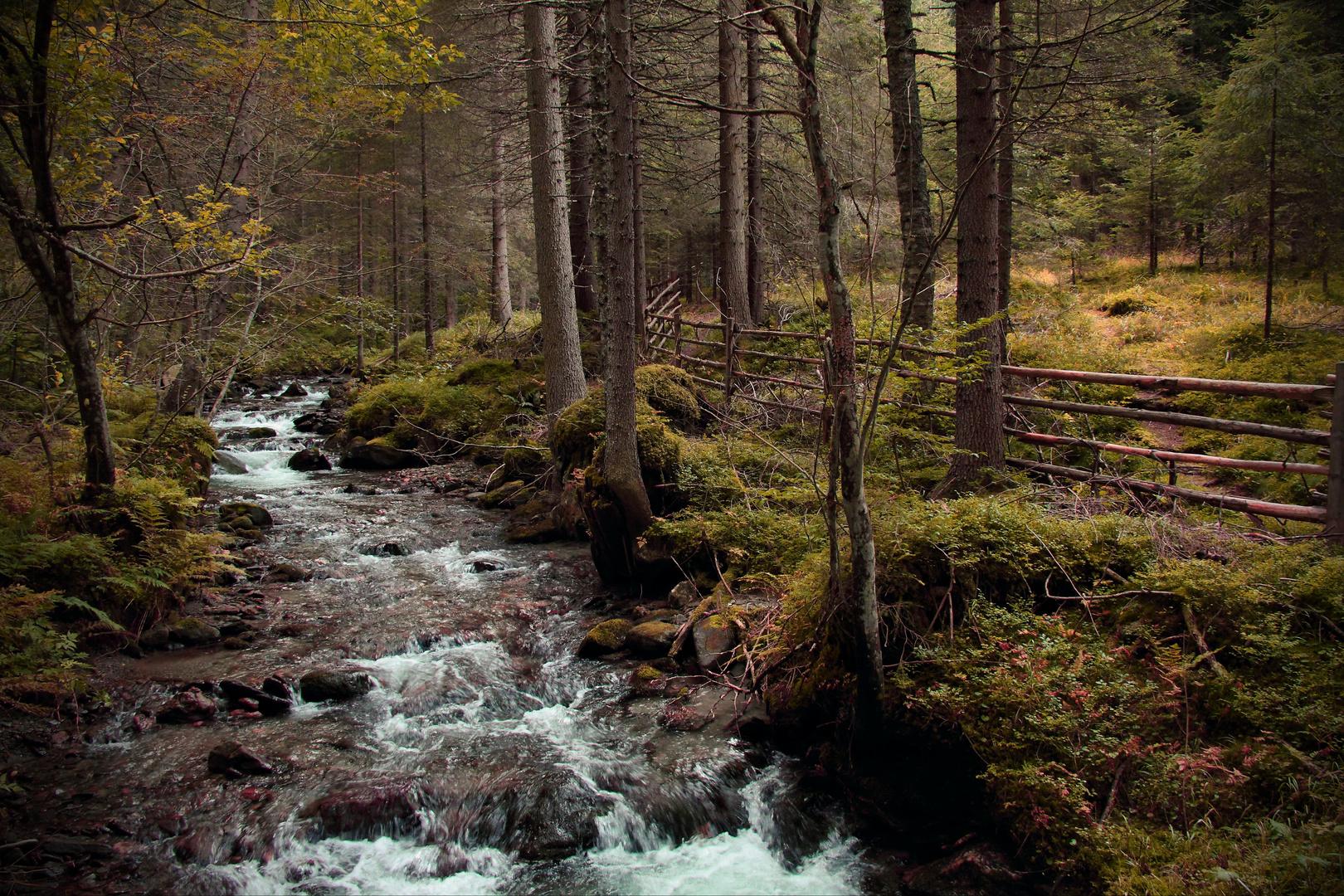 Herbst am Schalderer Bach