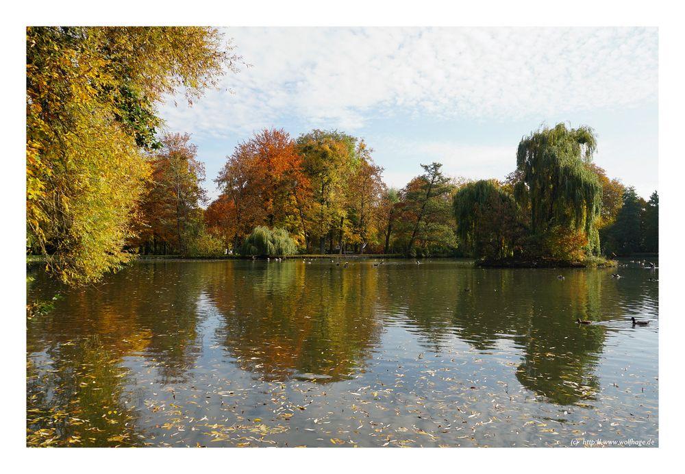 Herbst am Schwänchenteich
