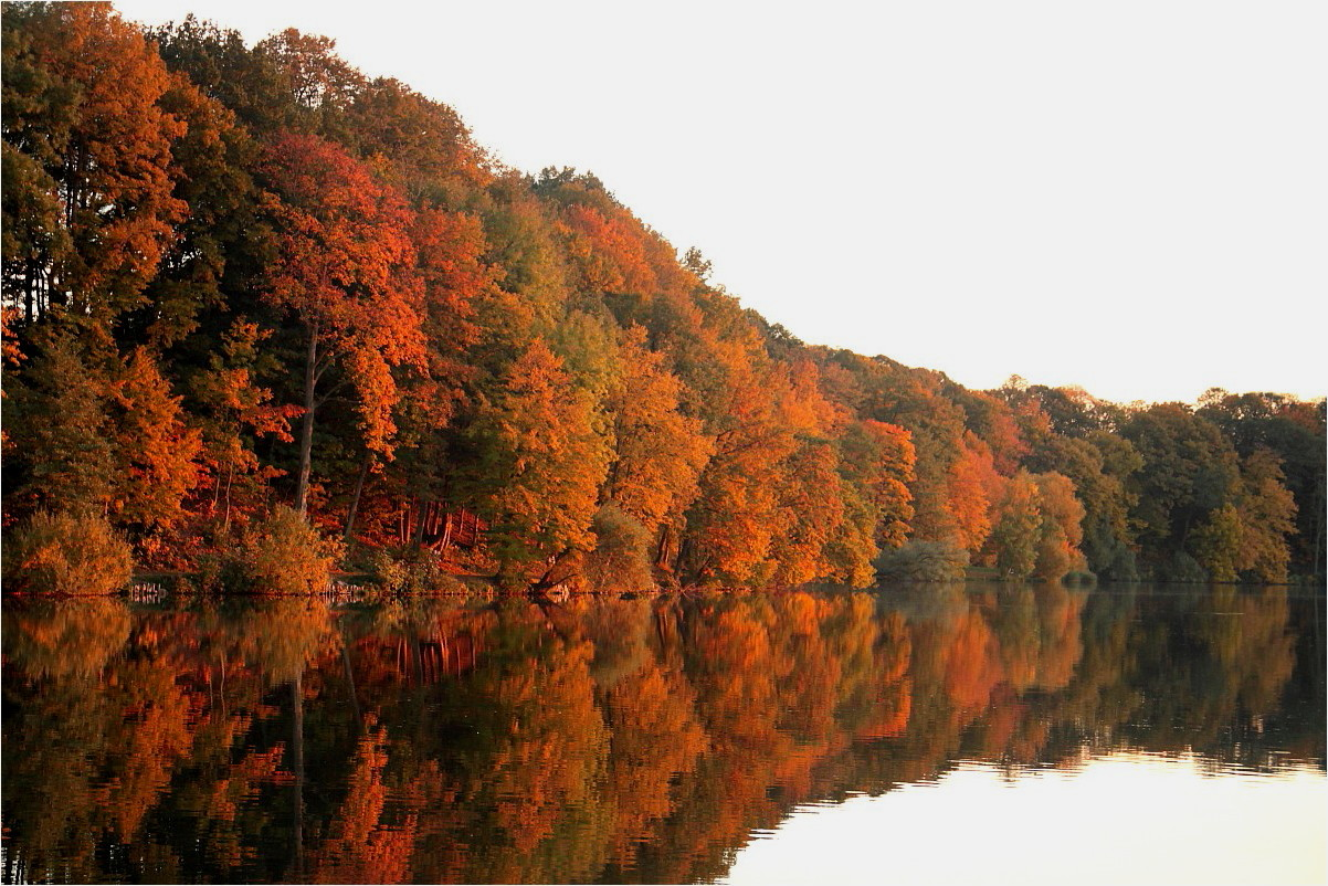 Herbst am See (3)