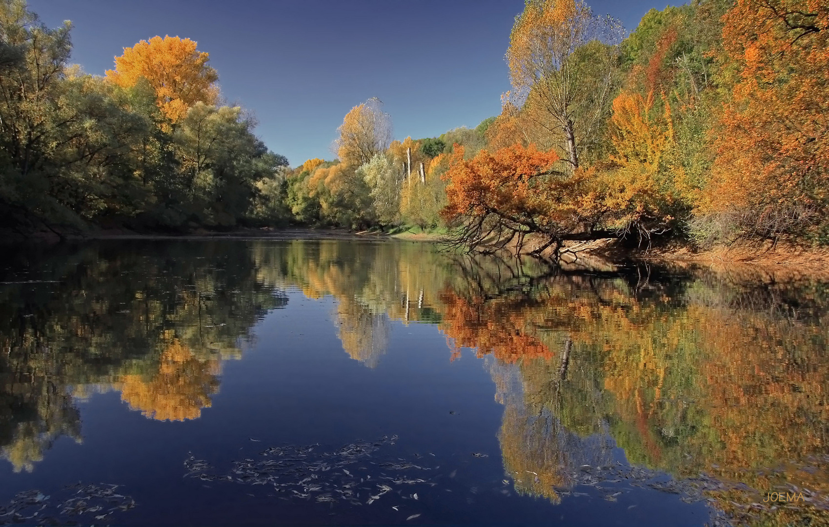 Herbst am See (4)