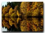 Herbst am See 4