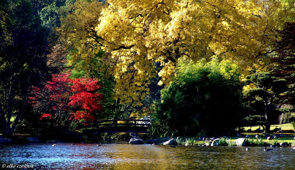 Herbst am See Gut Panker / Ostsee