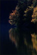 Herbst am Seeee